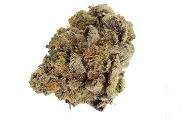 Platinum Girl Scout Cookie (INDICA)